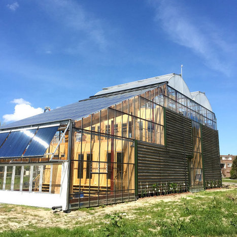Experimental Living Inside a Dutch Greenhouse | Small Houses and Sustainable Architecture | Scoop.it