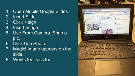 Linda Dougherty on Twitter   Google in the Library & Classroom   Scoop.it
