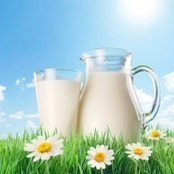 Vegetable 'milk' for lactose intolerance - NDTVCooks.com | @FoodMeditations Time | Scoop.it