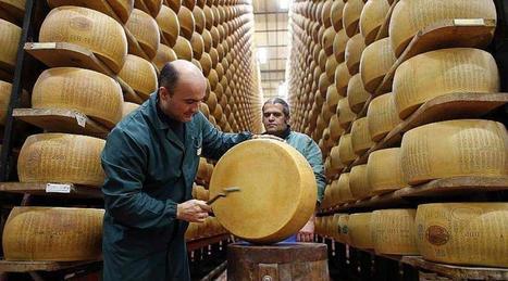 Etats-Unis. Une mafia du fromage dans le Wisconsin ? | The Voice of Cheese | Scoop.it