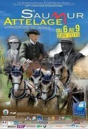 80 attelages représentant 11 nations à Saumur 6 au 9 juin   My Angers.info   Cheval et sport   Scoop.it