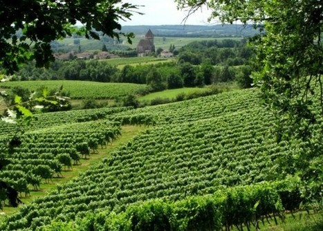 True to Terroir - France Today | Hotel in Dordogne Perigord | Scoop.it