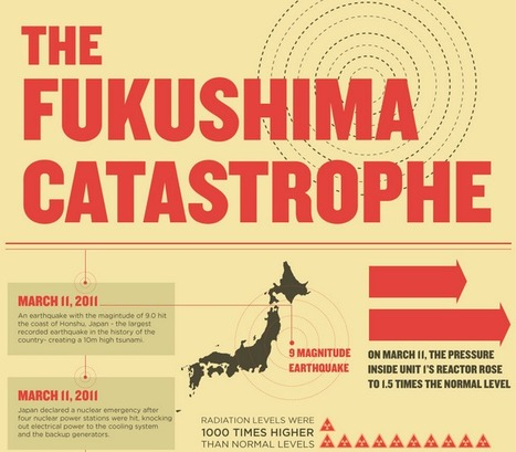 The Fukushima Catastrophe by The Numbers ★ The Credit Blog via @unouveaucompte | infographies | Scoop.it