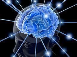 Capítulo IV: Neurotransmisores | Psicólogos en Línea Gratis 2013 | Neurotransmisores de  la felicidad | Scoop.it