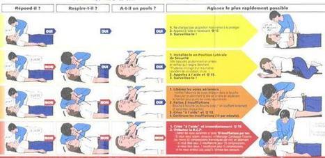 Maladie cardio-vasculaire : maladie qui se rapporte au cœur et aux vaisseaux | SVT: l'obésité, les maladies cardio-vasculaires le diabète et la diététique | Scoop.it
