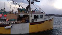 Formal search for 5 Nova Scotia fishermen called off - CBC.ca | Nova Scotia Fishing | Scoop.it