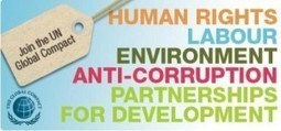 How NGOs use e-learning? | NGOs in Human Rights, Peace and Development | Scoop.it