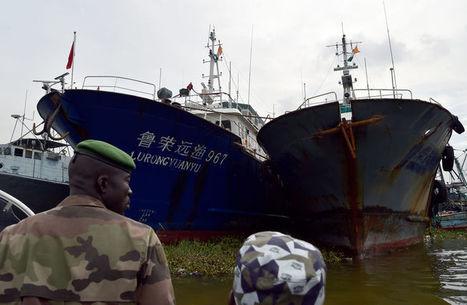 L'Afrique se mobilise contre les pêcheurs chinois illégaux | NOUVELLES D'AFRIQUE | Scoop.it