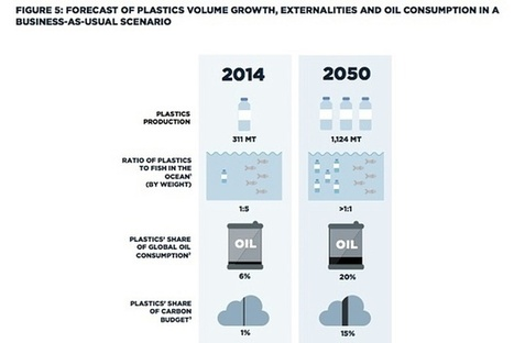 More plastic than fish in the sea by 2050, says Ellen MacArthur | Marine Litter | Scoop.it