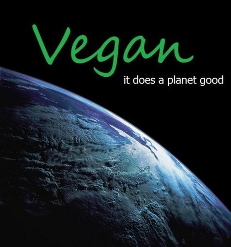 Green Living Meatless Monday Go Vegan For Earth Day Veganism | Global Animal | Nature Animals humankind | Scoop.it