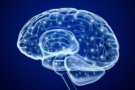 Scientists have invented a brain decoder that could read your inner thoughts | It All Begins in Your Mind | Scoop.it