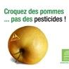 OGM, Pesticides, Les alternatives et les problèmes de l'agriculture chimique
