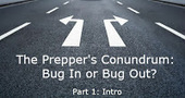 Activist Post: The Prepper's Conundrum: To Bug in or Bug Out? (Pt. 1) | Self Reliance | Scoop.it
