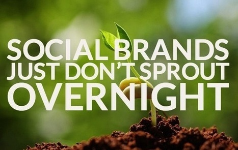Social Brands Just Don't Sprout Overnight | Serre Romani | Scoop.it