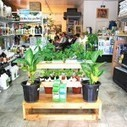 The Urban Farming Supply Chain In The Modern City — The Pop-Up City   Urban Greens Watch   Scoop.it