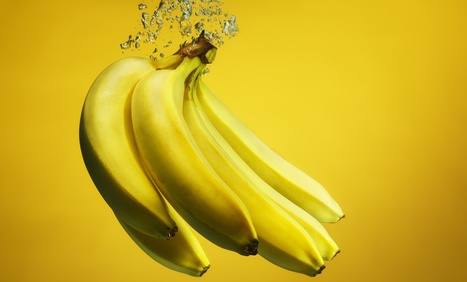 What Do You Mean This Banana Isn't Vegan? | Vertical Farm - Food Factory | Scoop.it
