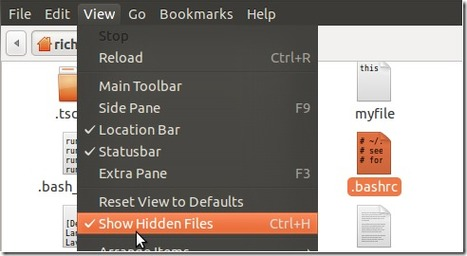 [Ubuntu Tips] Prevent Accidental Deletion of Files and Folders in Ubuntu 10.10 Maverick Meerkat | Liberian Geek | Linux | Scoop.it