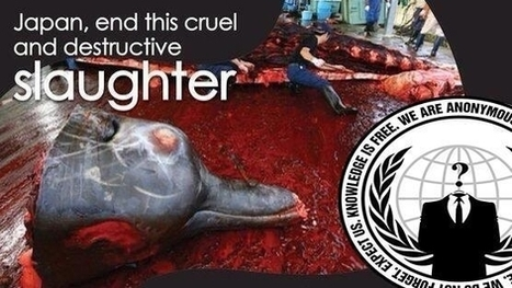 The Japanese Government: Stop The Slaughter Of Dolphins In #Taiji | Titan Explores | Scoop.it