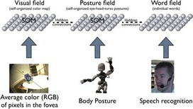 Posture Affects How Robots and Infants Map Words to Objects | Social Foraging | Scoop.it