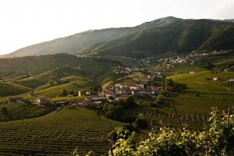 Global #Prosecco shortage could hit this summer | Vitabella Wine Daily Gossip | Scoop.it