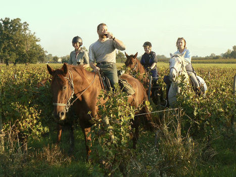 Wine Lovers on Horseback Canter, Slurp in Bordeaux | Getting Married in South West France | Scoop.it
