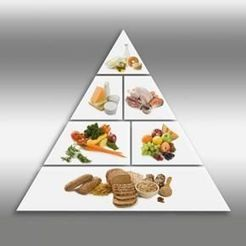 Five Basic Food Groups | Health and Physical Education | Scoop.it