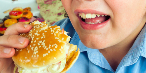 Government to tackle childhood obesity - Health - NZ Herald News | Health Education - NCEA (Alfriston College) (level 1-3) | Scoop.it
