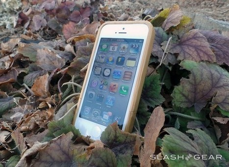 10terra Wood.. limited iPhone 5 case review | Tech Gadgetry | Scoop.it