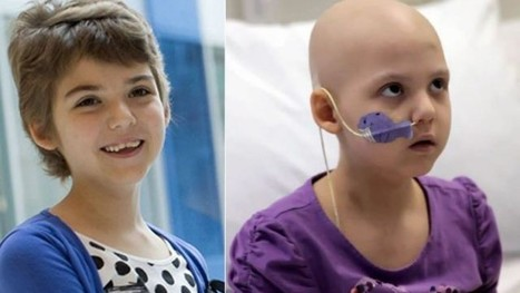T-Cell Therapy Eradicates an Aggressive Leukemia in Two Children | Biosciencia News | Scoop.it