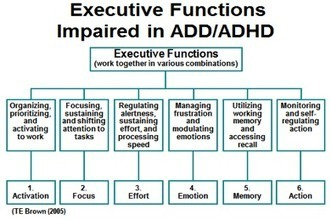 Executive Functions Impaired in ADD/ADHD | ESCAP child and adolescent psychiatry | Scoop.it