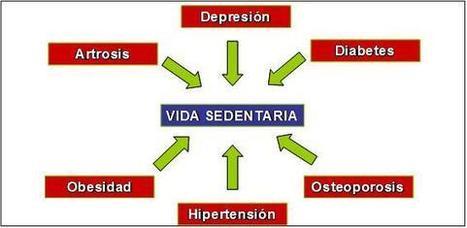 Oncosaludable: Riesgos de la vida sedentaria. | NO al sedentarismo! | Scoop.it