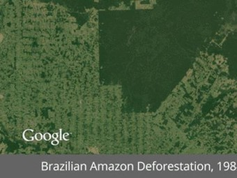Google's new timelapse project shows 30 years of disappearing rainforest in just seconds   The Glory of the Garden   Scoop.it