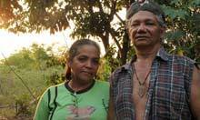 Environmental activists 'being killed at rate of one a week' | Amazonas, agora! | Scoop.it