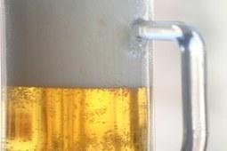 La cerveza previene contra enfermedades hepáticas — Portal de la UEX - Bienvenido a la Universidad de Extremadura | Cervejas - Material Complementar | Scoop.it