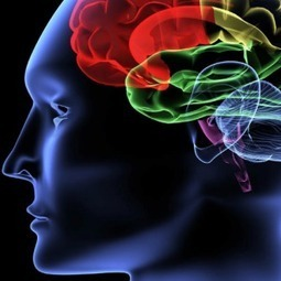 Neuromarketing: The Science Behind Selling | IMC Consumer behaviour vs Objectives | Scoop.it
