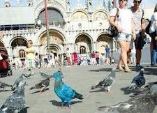 Turismo: allarme Federalberghi, -4,7% occupati - | Stefano Sciamanna - Web Hotel Marketing | Scoop.it
