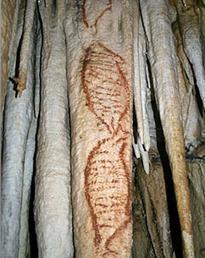 Les plus anciennes peintures pariétales à Nerja en Espagne ? | Prehistoire | Scoop.it