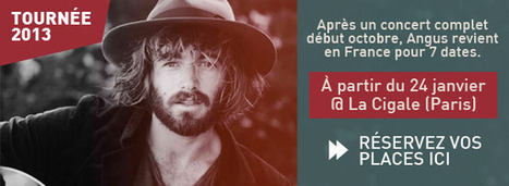Attention Angus Stone déboule en France | Chez l'vieux | News musique | Scoop.it