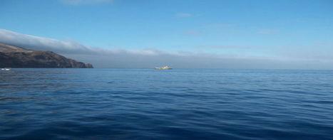 California Fishing Trips | California Barracuda Fishing Trip's | Scoop.it