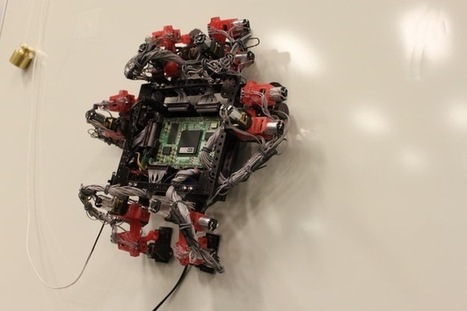 Wall-Crawling Gecko Robot May Fly in Space One Day | Robots and Robotics | Scoop.it