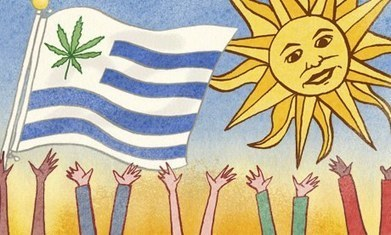 Heroic Uruguay deserves a Nobel peace prize for legalising cannabis | Saif al Islam | Scoop.it
