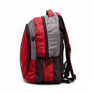 Savekarlo - AMERICAN TOURISTER American Tourister Everyday Laptop Backpack | Best Deals Online | Scoop.it