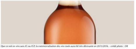 Commerce / economie : Recul de 22% des volumes des vins sans IG rouges et rosés | Winemak-in | Scoop.it