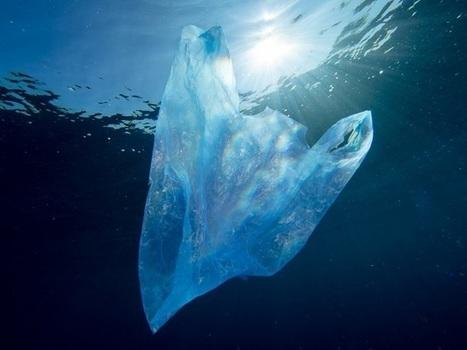 Des déchets plastiques qui disparaissent dans l'océan ?   Toxique, soyons vigilant !   Scoop.it
