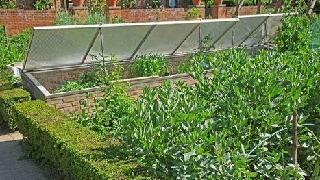 Au jardin ce week-end : construisez votre châssis - Le Figaro | Habitat durable | Scoop.it