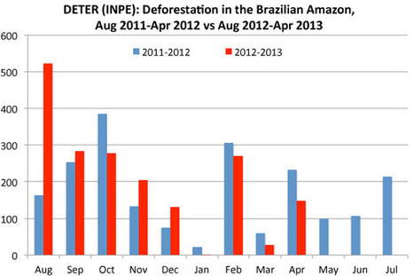 Deforestation in the Brazilian Amazon pacing 88% higher than last year's rate | Messenger for mother Earth | Scoop.it