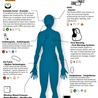 Mobile Health: How Mobile Phones Support Health Care