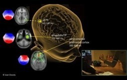 Moral evaluations of harm are instant and emotional, brain study shows | ScienceBlog.com | Radical Compassion | Scoop.it