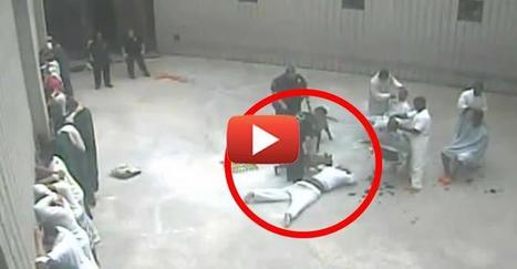 Shocking Video Captures Deputy Siccing Dog on Inmate, Stomping him for No Reason | Introduce new course in schools called COMPASSION | Scoop.it