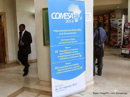 La RDC bientôt dotée d'une loi sur l'harmonisation du secteur agricole | Agriculture en RDC - République Démocratique du Congo | Scoop.it